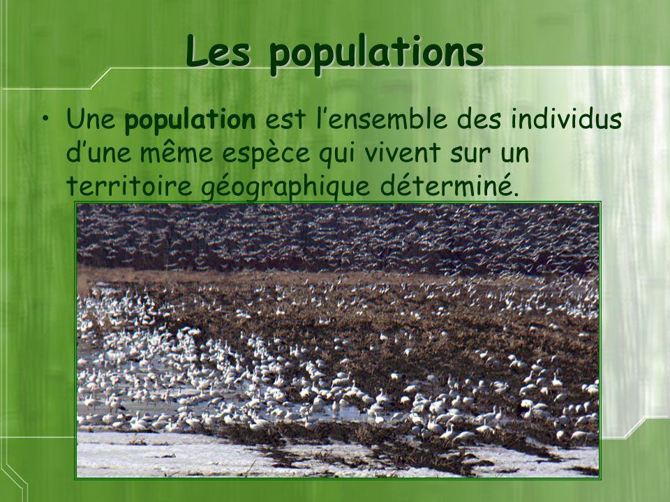 Les populations Une population est l'ensemble des individus d'une même espèce qui vivent sur un territoire géographique déterminé.