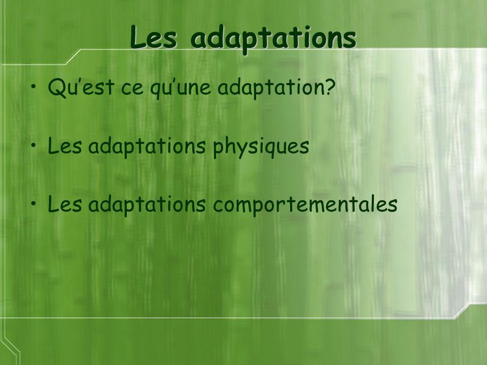 Les adaptations Qu'est ce qu'une adaptation Les adaptations physiques