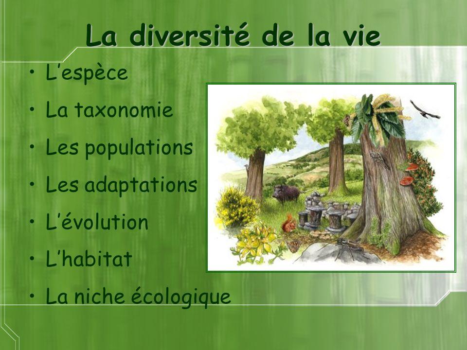 La diversité de la vie L'espèce La taxonomie Les populations