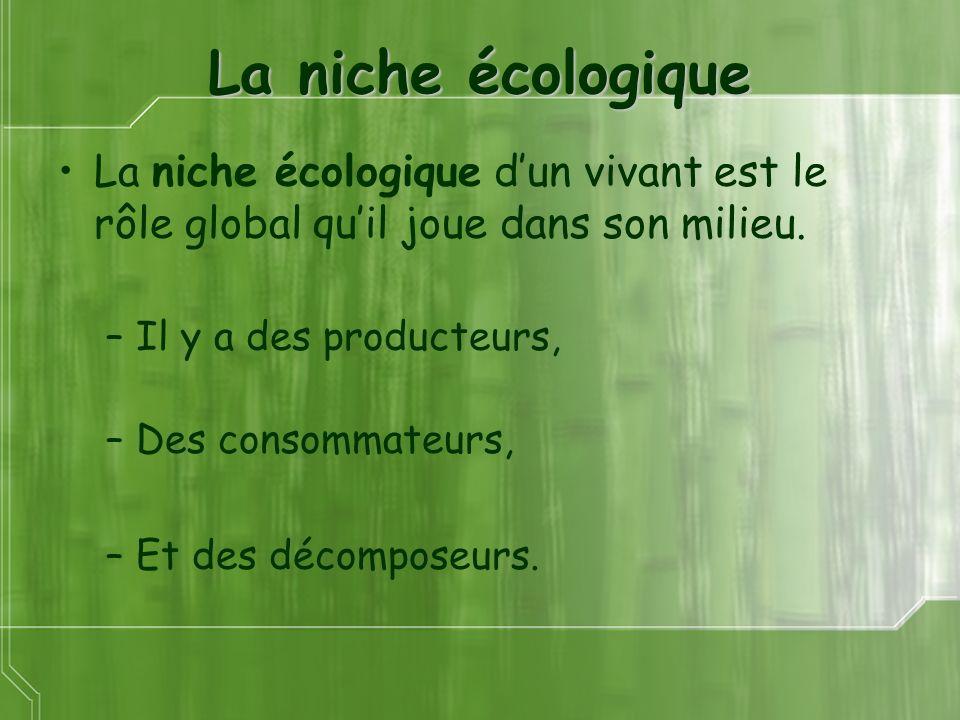 La niche écologique La niche écologique d'un vivant est le rôle global qu'il joue dans son milieu. Il y a des producteurs,