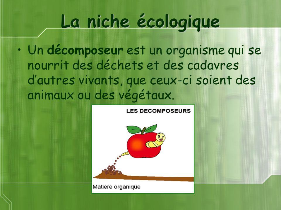 La niche écologique