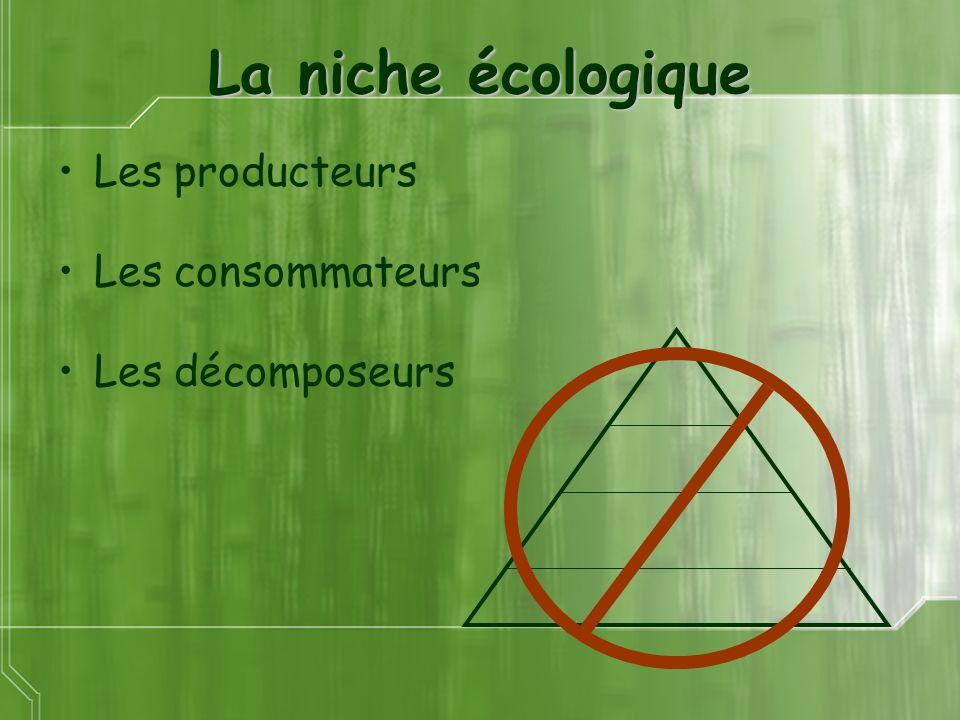 La niche écologique Les producteurs Les consommateurs Les décomposeurs