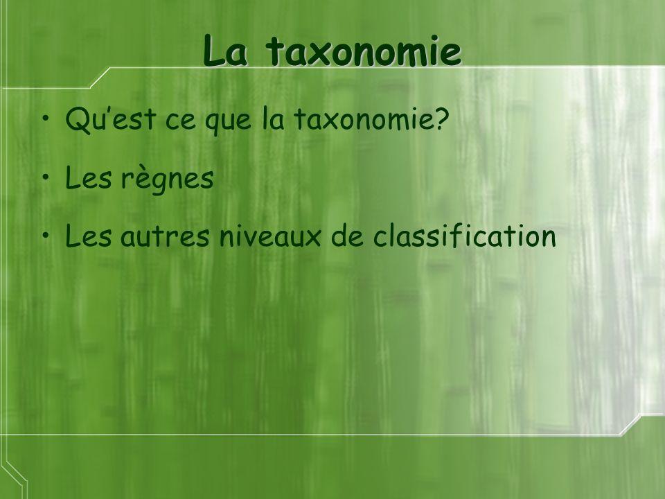 La taxonomie Qu'est ce que la taxonomie Les règnes