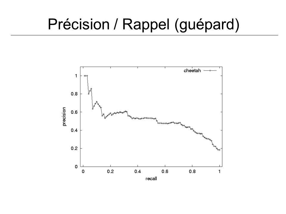 Précision / Rappel (guépard)