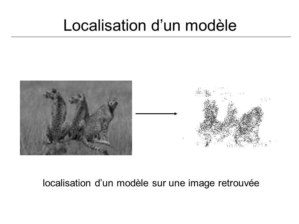 Localisation d'un modèle