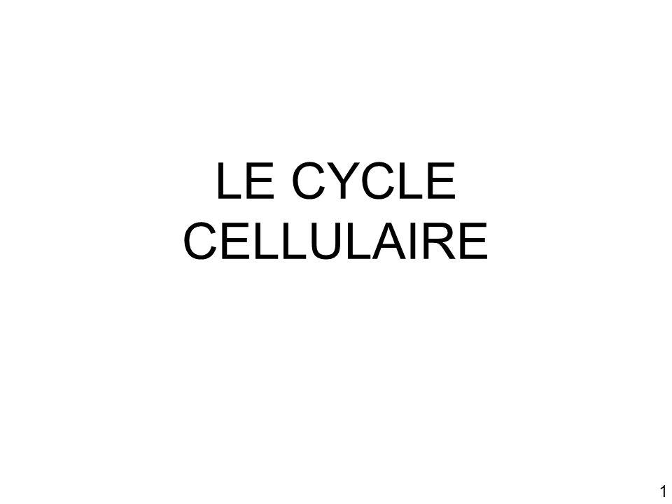 Mardi 23 janvier 2007 LE CYCLE CELLULAIRE