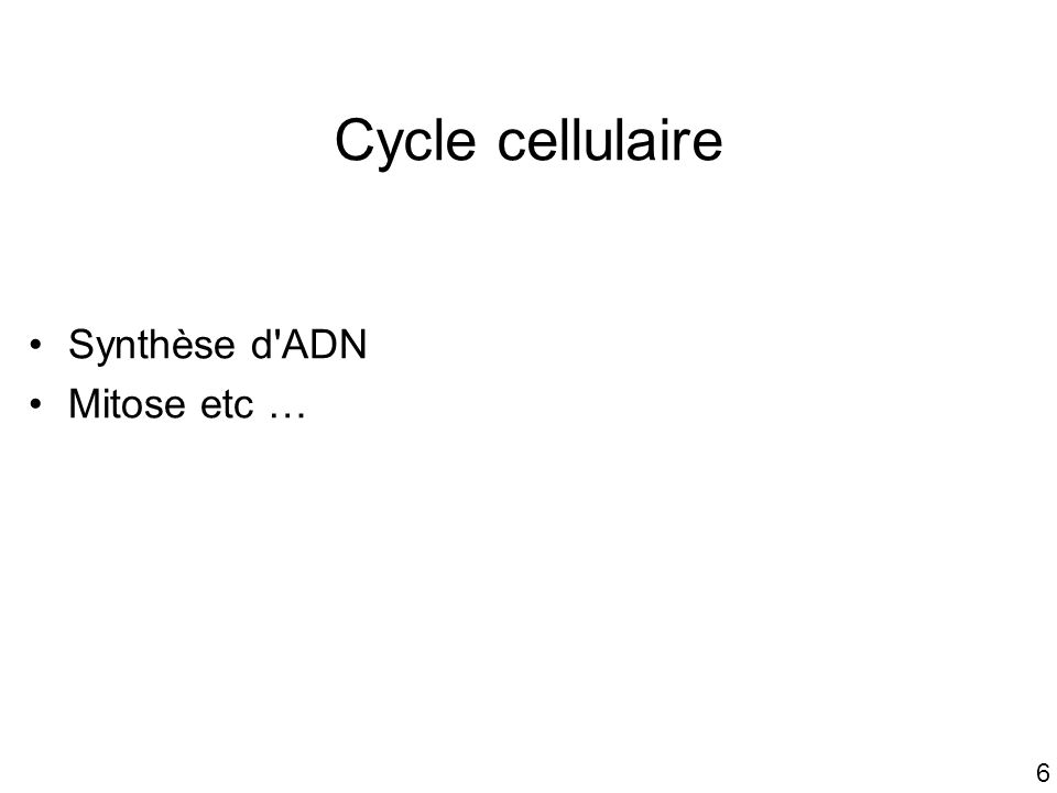 Cycle cellulaire Synthèse d ADN Mitose etc … #1p990