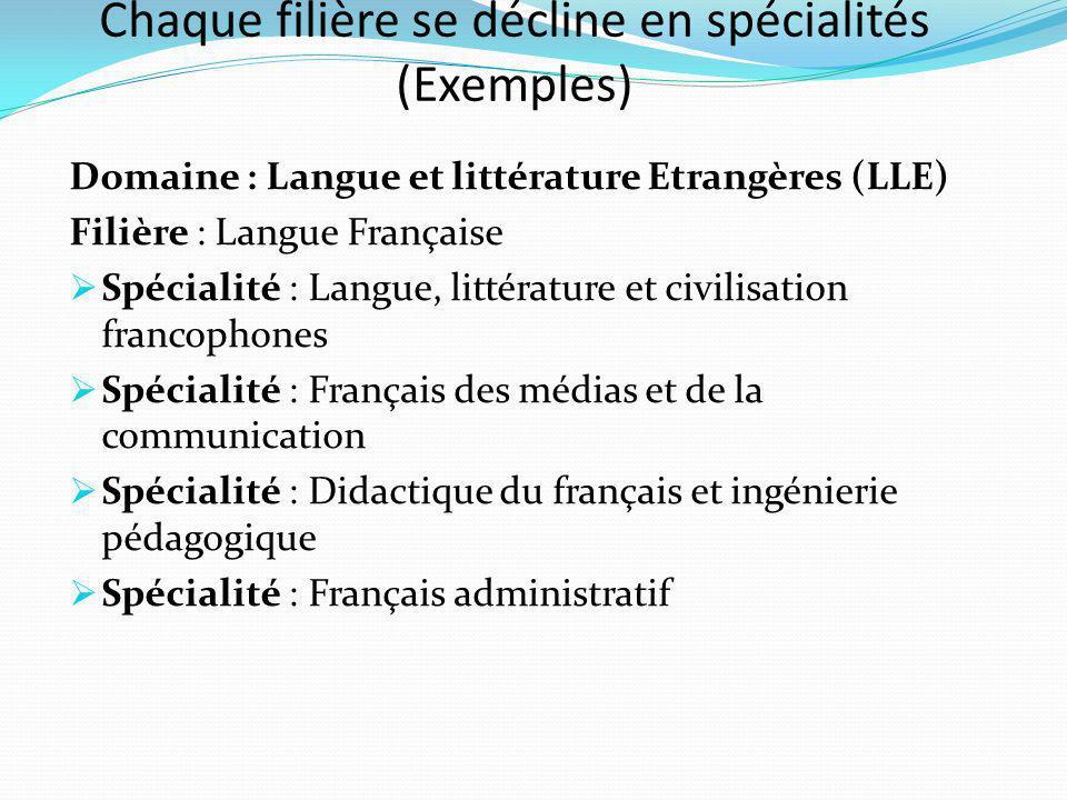 Chaque filière se décline en spécialités (Exemples)