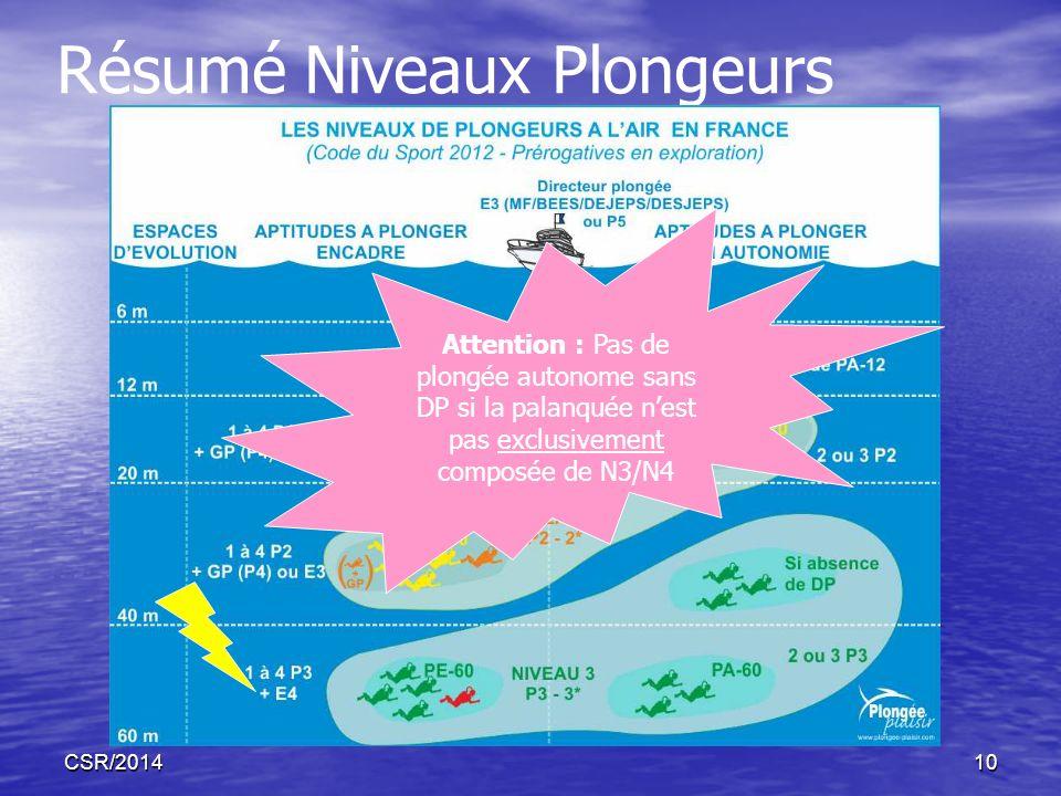 Résumé Niveaux Plongeurs