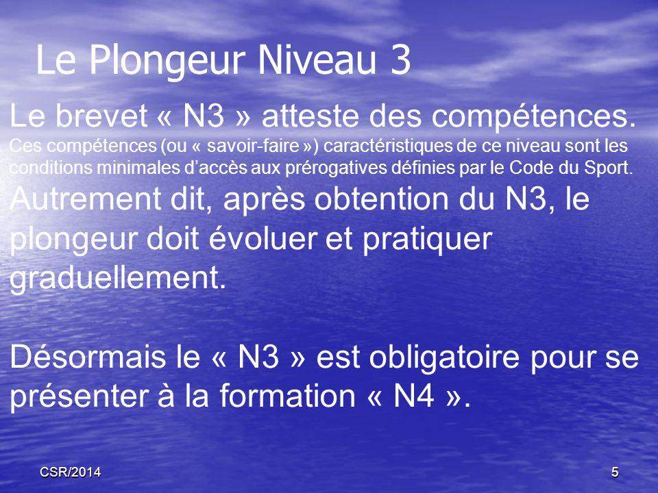Le Plongeur Niveau 3