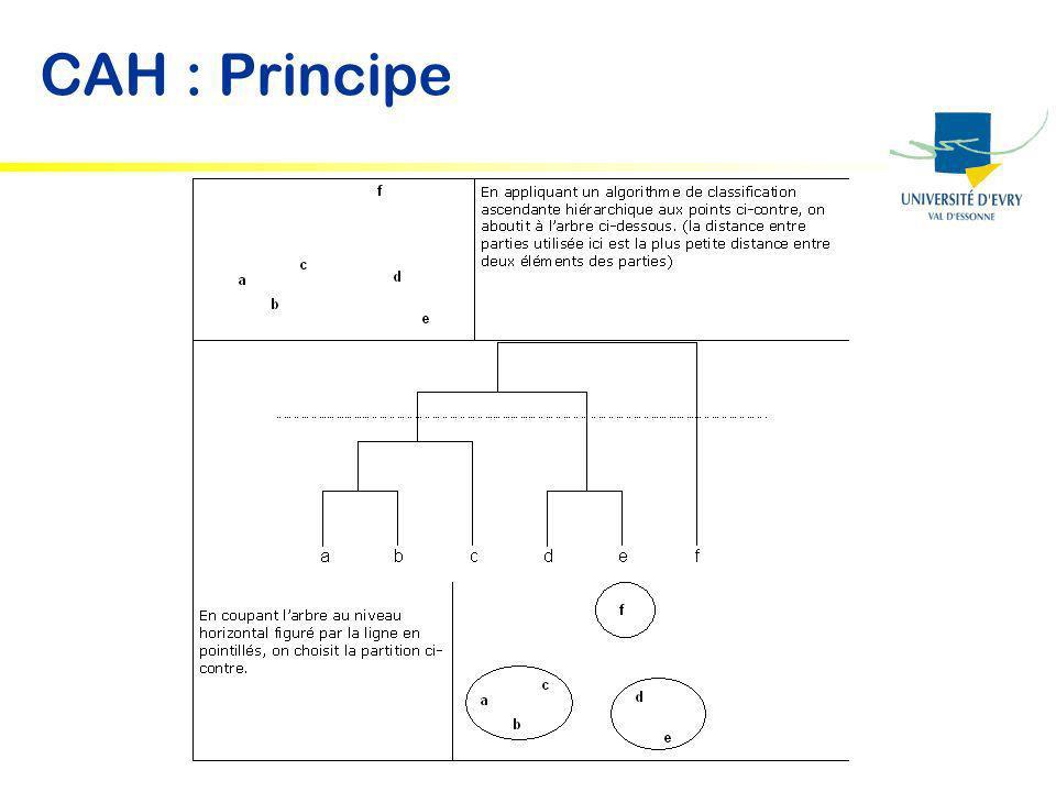 CAH : Principe