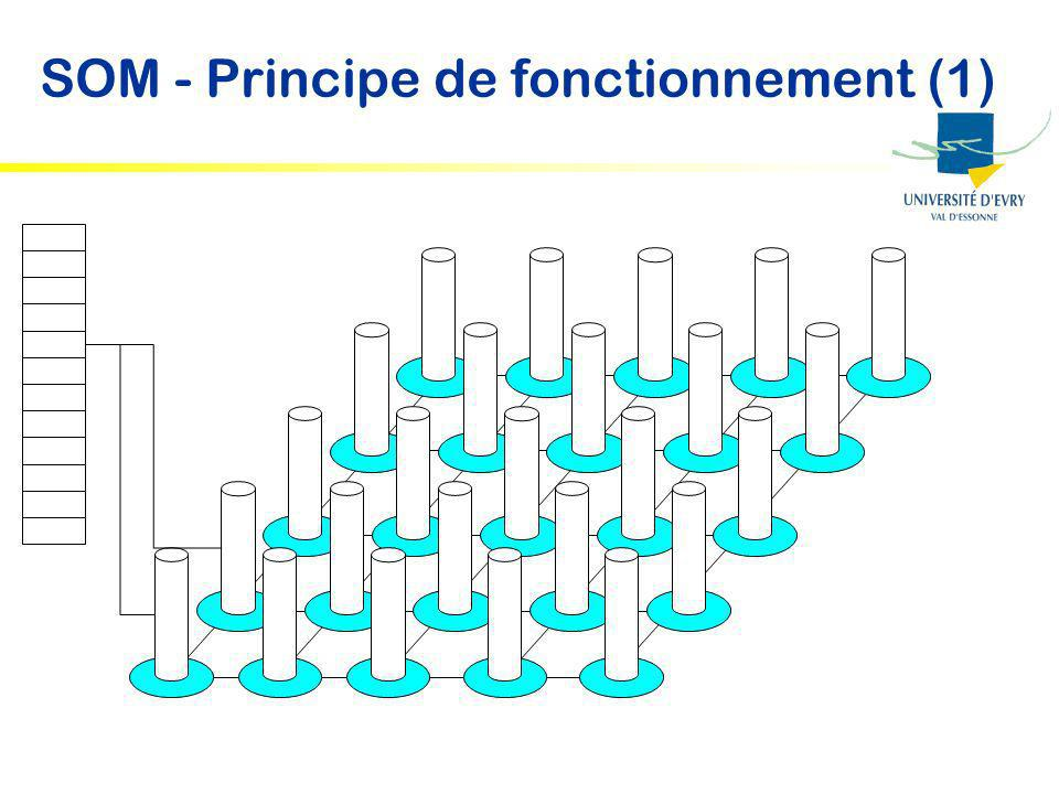 SOM - Principe de fonctionnement (1)