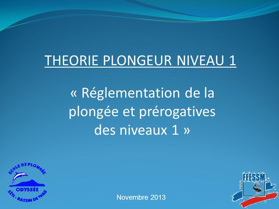 THEORIE PLONGEUR NIVEAU 1