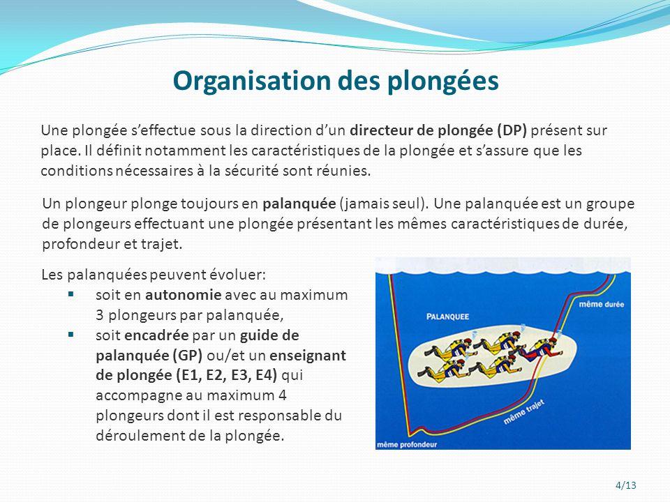 Organisation des plongées