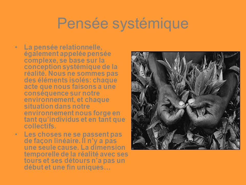 Pensée systémique
