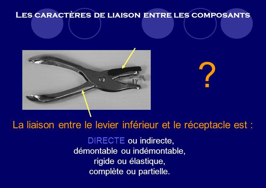 Les caractères de liaison entre les composants