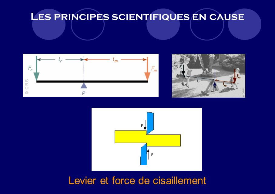 Les principes scientifiques en cause