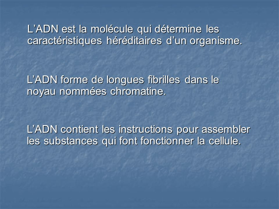 L'ADN est la molécule qui détermine les caractéristiques héréditaires d'un organisme.