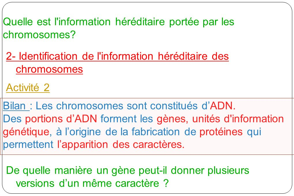 Quelle est l information héréditaire portée par les chromosomes
