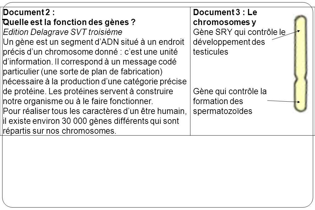 Document 2 : Quelle est la fonction des gènes Edition Delagrave SVT troisième.