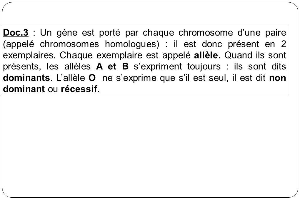 Doc.3 : Un gène est porté par chaque chromosome d'une paire (appelé chromosomes homologues) : il est donc présent en 2 exemplaires.