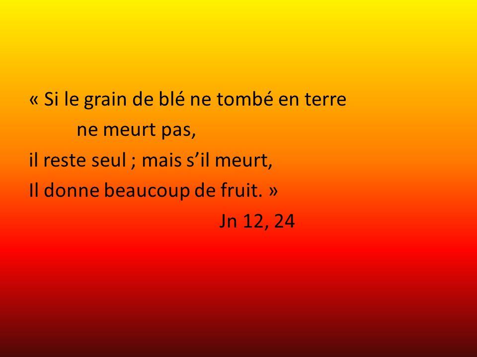 « Si le grain de blé ne tombé en terre