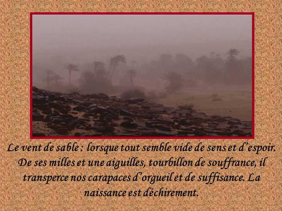 Le vent de sable : lorsque tout semble vide de sens et d'espoir