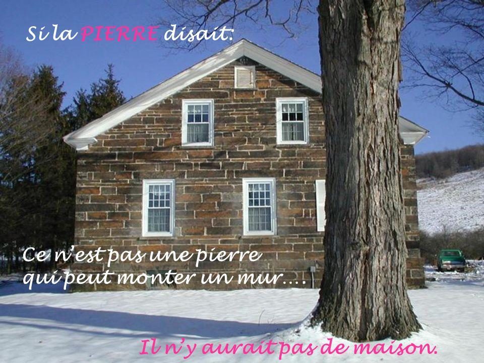 Si la PIERRE disait: Ce n'est pas une pierre qui peut monter un mur…. Il n'y aurait pas de maison.