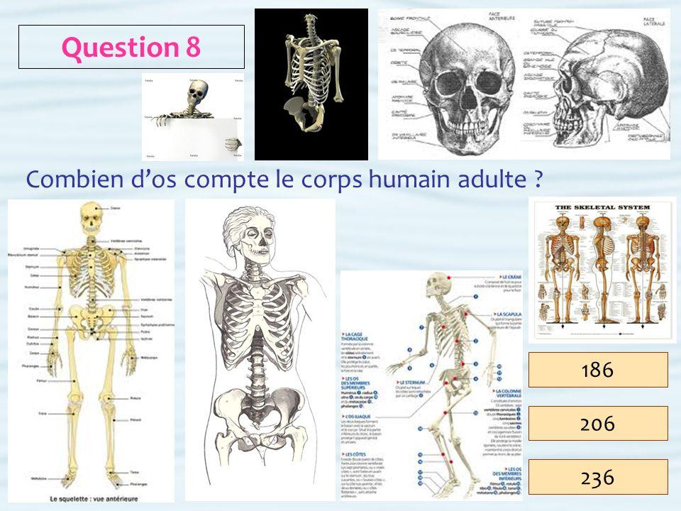 Question 8 Combien d'os compte le corps humain adulte 186 206 236