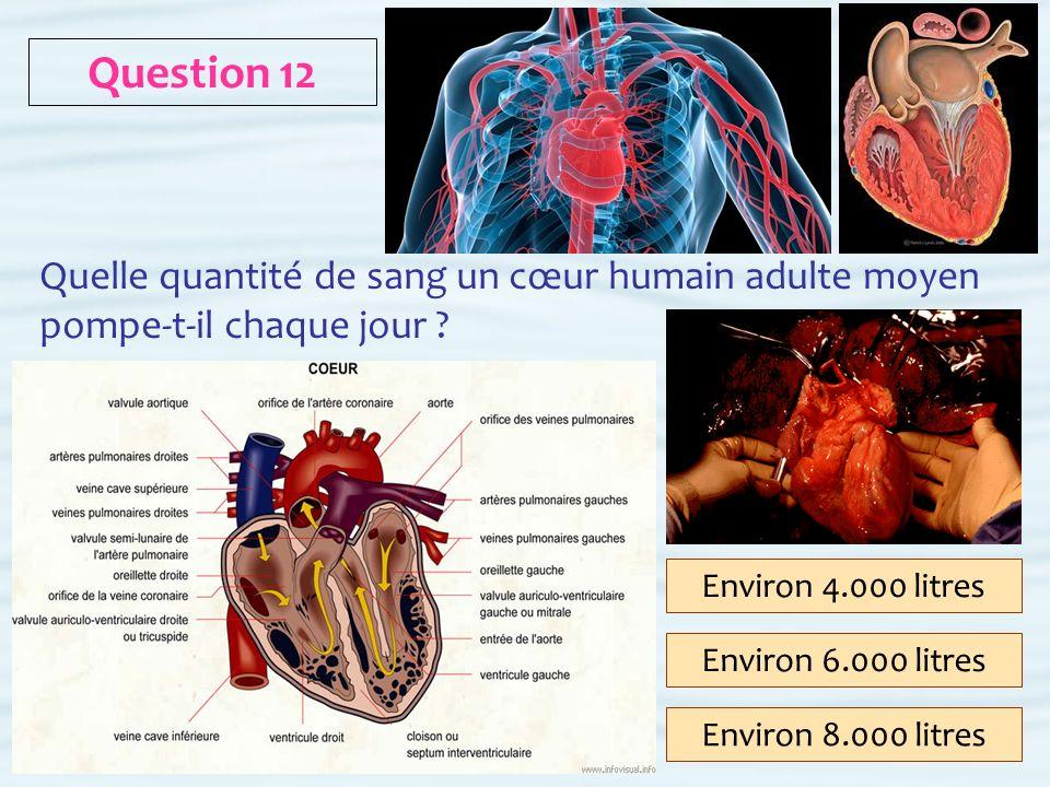 Question 12 Quelle quantité de sang un cœur humain adulte moyen pompe-t-il chaque jour Environ 4.000 litres.