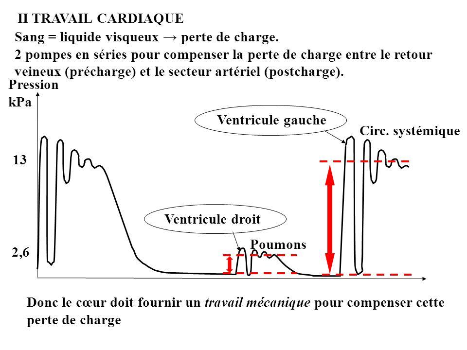 II TRAVAIL CARDIAQUE Sang = liquide visqueux → perte de charge.