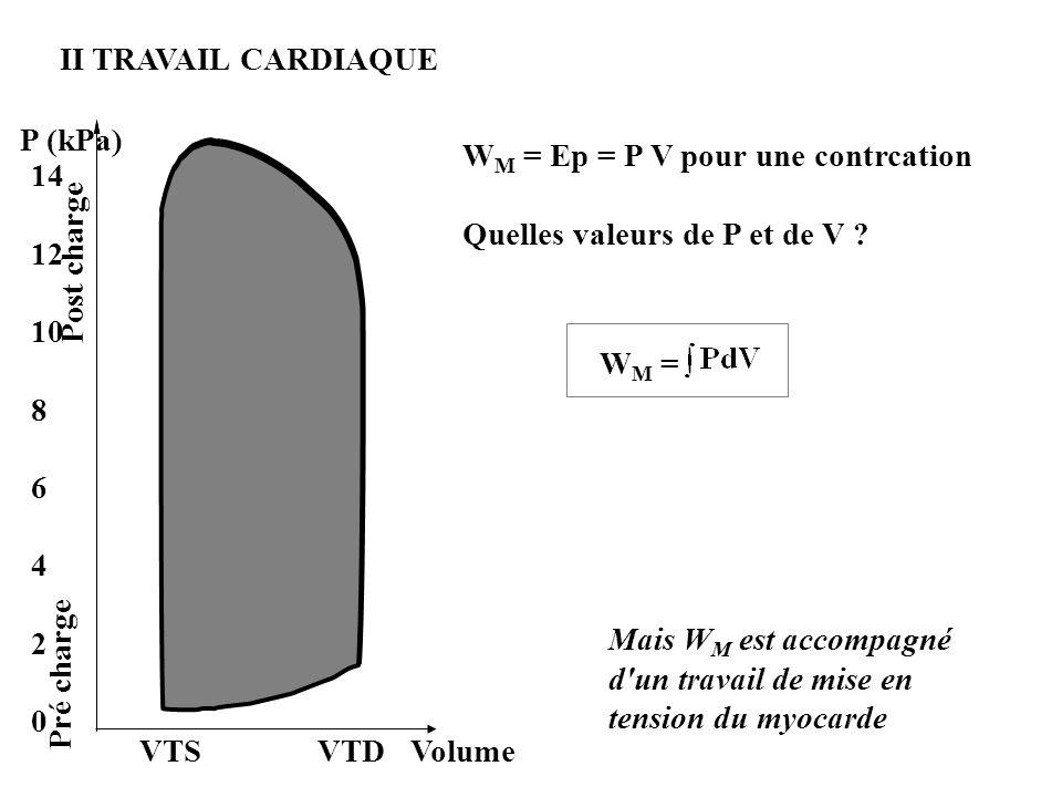 II TRAVAIL CARDIAQUE P (kPa) WM = Ep = P V pour une contrcation. Quelles valeurs de P et de V WM =