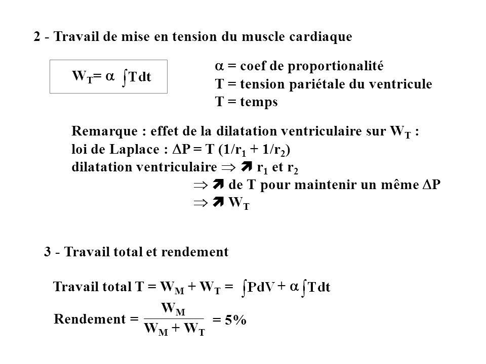 2 - Travail de mise en tension du muscle cardiaque