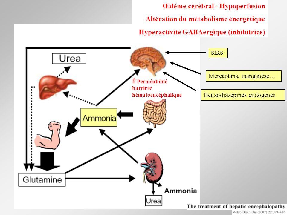 Œdème cérébral - Hypoperfusion Altération du métabolisme énergétique