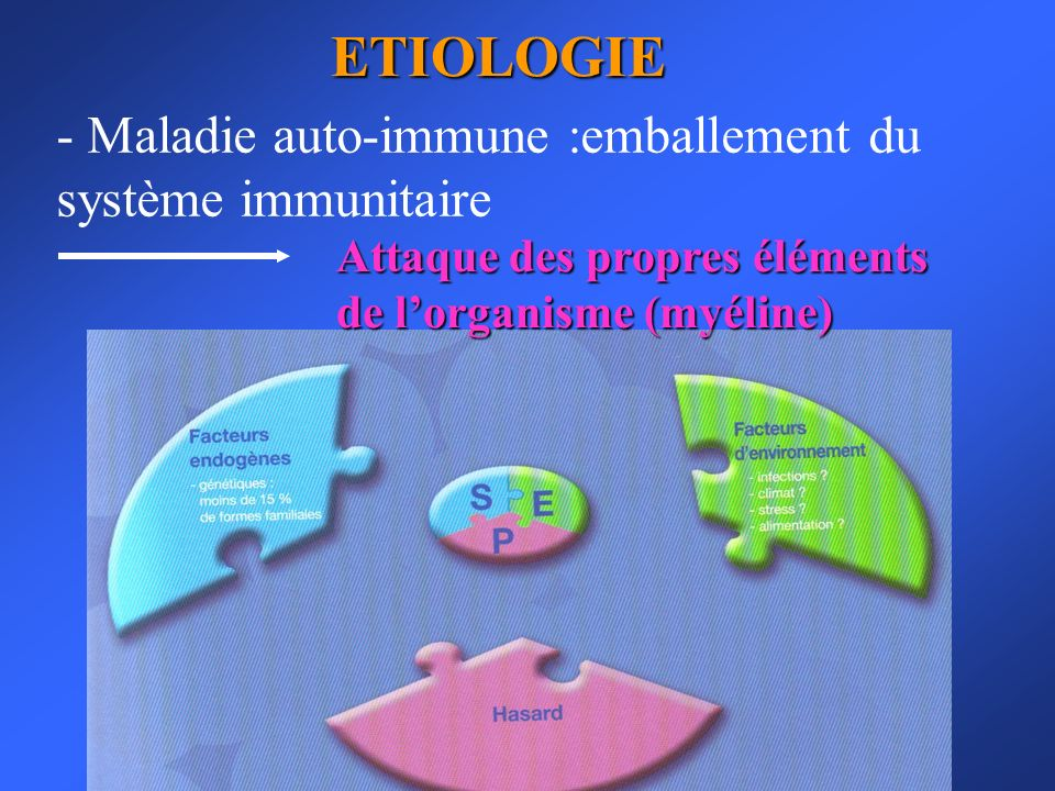 ETIOLOGIE Maladie auto-immune :emballement du système immunitaire