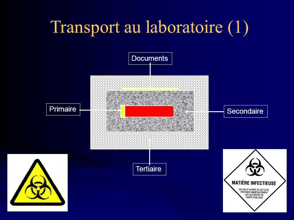Transport au laboratoire (1)