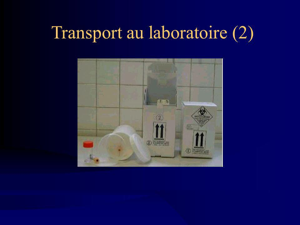 Transport au laboratoire (2)