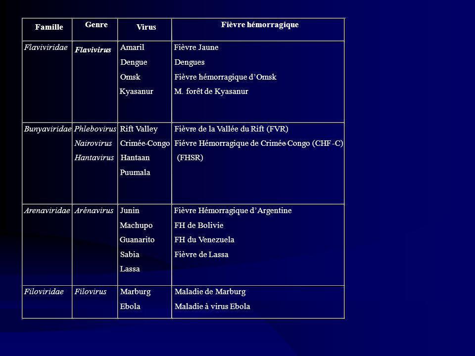 Famille Genre Virus Fièvre hémorragique Flavivirus