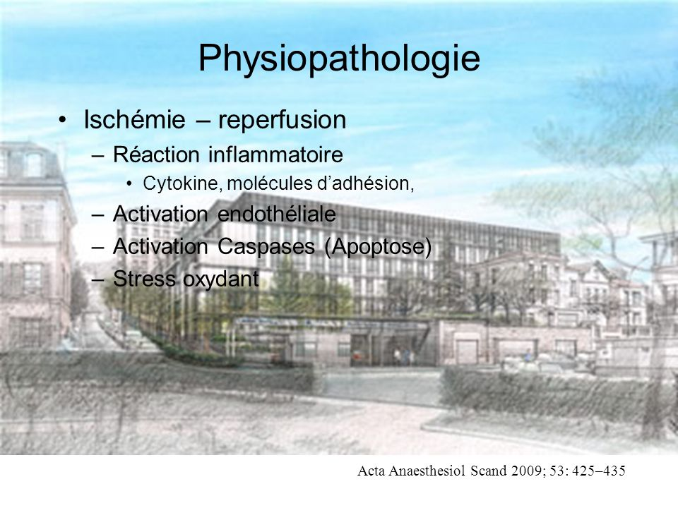 Physiopathologie Ischémie – reperfusion Réaction inflammatoire