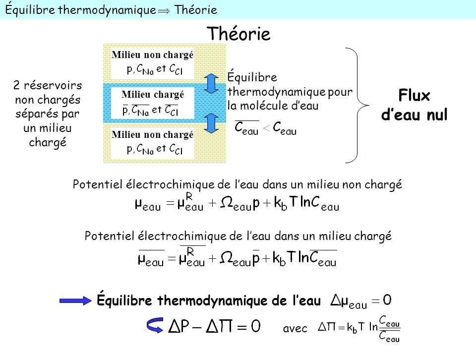 Théorie Flux d'eau nul Équilibre thermodynamique de l'eau