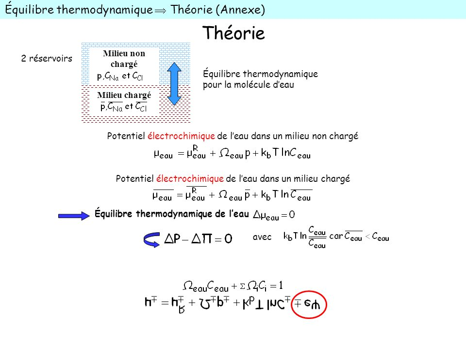 Théorie Équilibre thermodynamique  Théorie (Annexe) Milieu non chargé