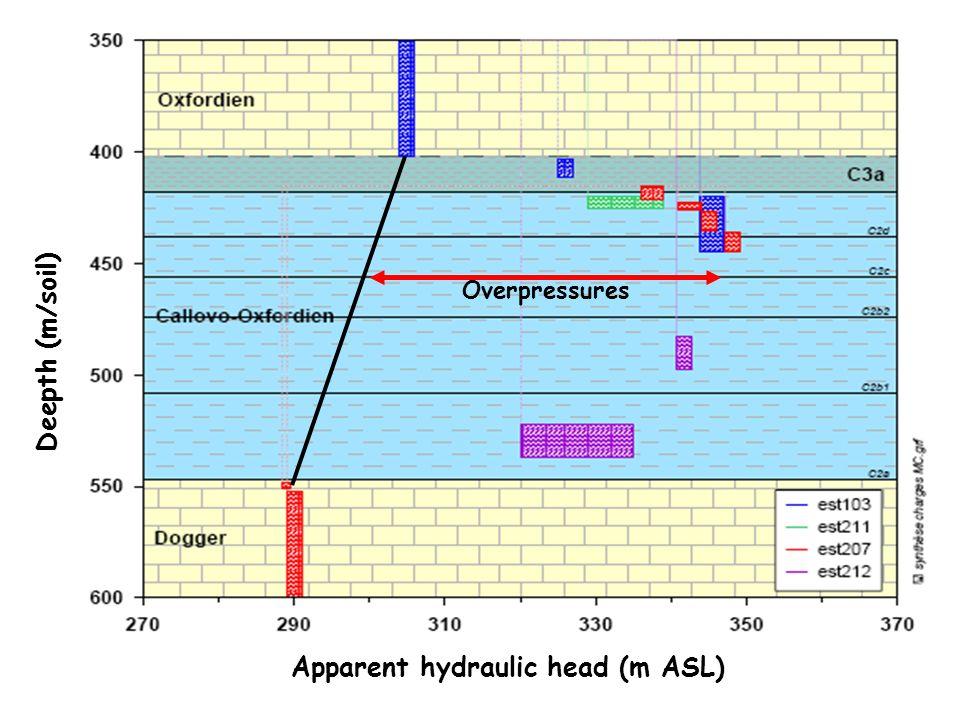 Apparent hydraulic head (m ASL)