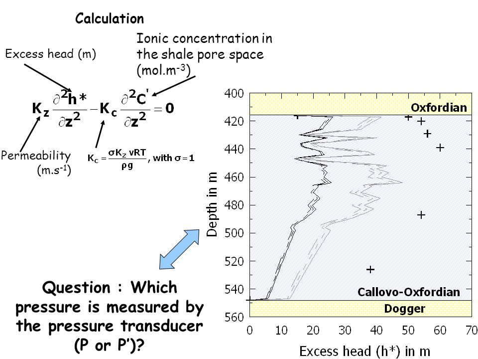 Calculation Ionic concentration in the shale pore space (mol.m-3) Excess head (m) Permeability (m.s-1)