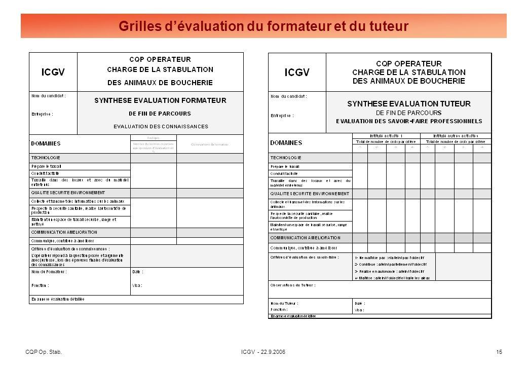 Évaluation du Professionnel et Grille de validation