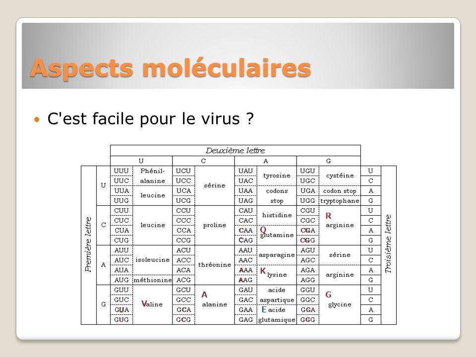 Aspects moléculaires C est facile pour le virus E A C U V R CG Q G K