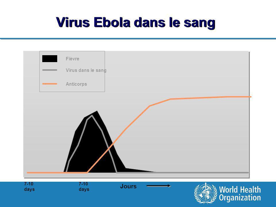 Virus Ebola dans le sang