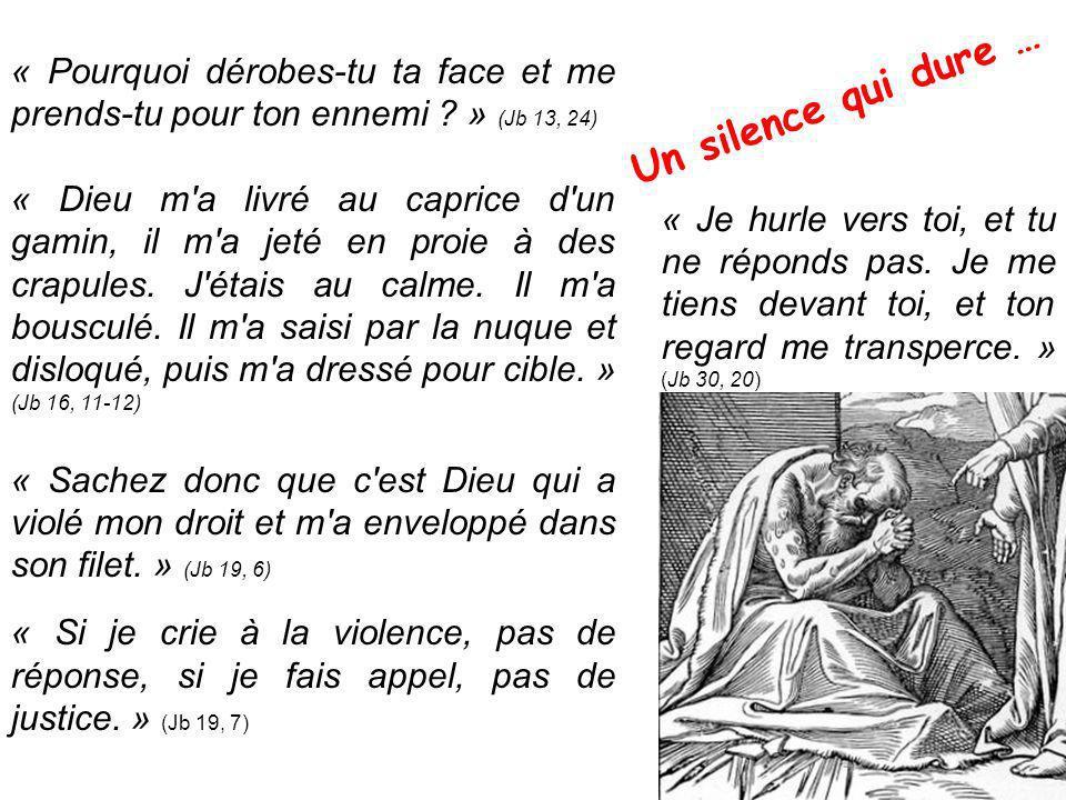 « Pourquoi dérobes-tu ta face et me prends-tu pour ton ennemi » (Jb 13, 24)