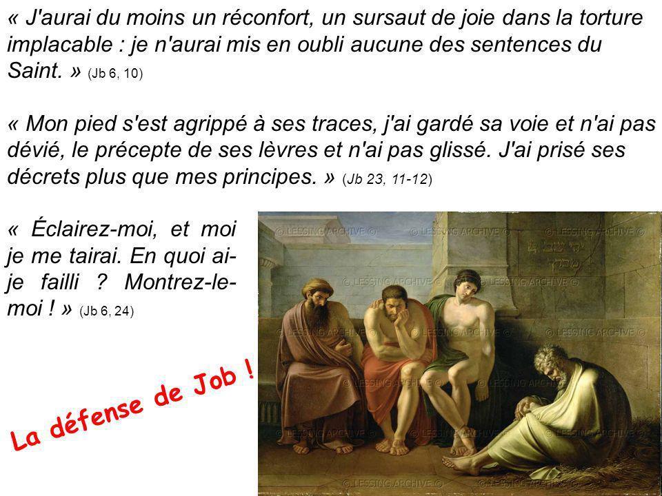 « J aurai du moins un réconfort, un sursaut de joie dans la torture implacable : je n aurai mis en oubli aucune des sentences du Saint. » (Jb 6, 10)