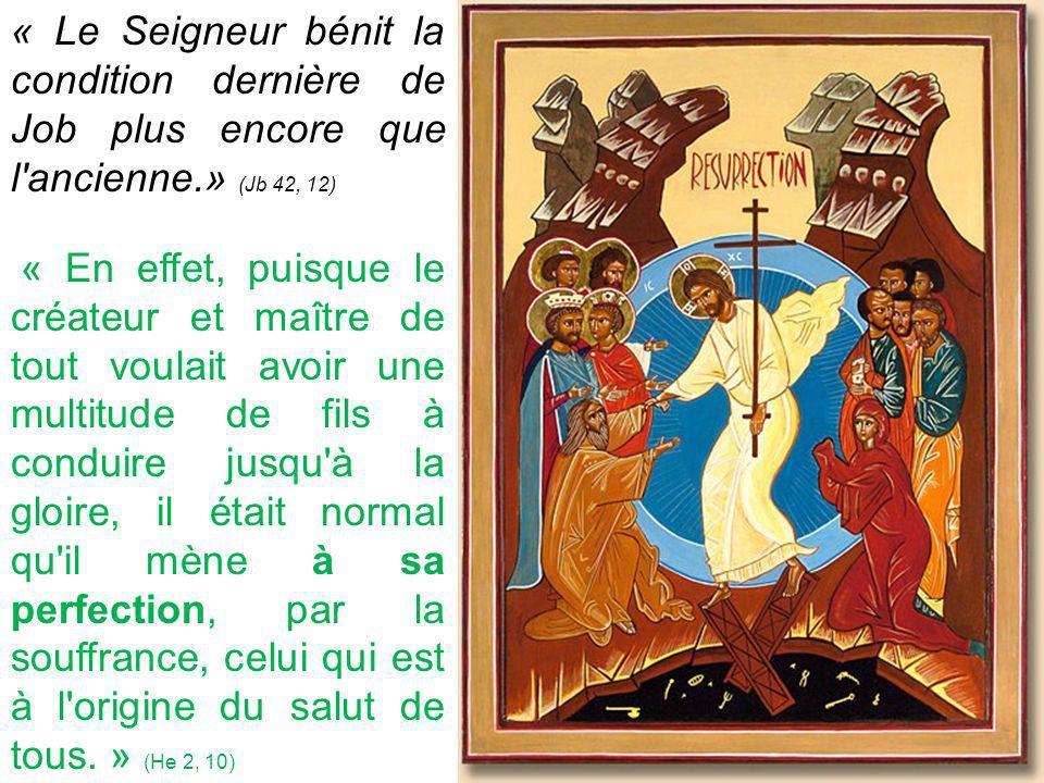 « Le Seigneur bénit la condition dernière de Job plus encore que l ancienne.» (Jb 42, 12)