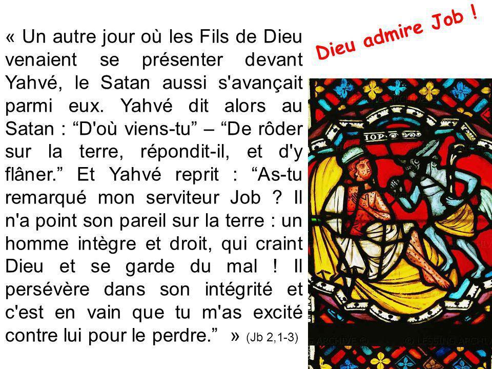 Dieu admire Job !